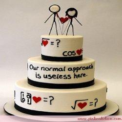 Noivinhos para bolo originais para um casal de matemáticos