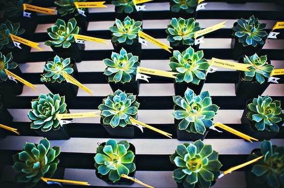 Bodas para Flores en Souvenirs