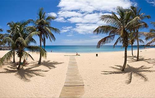 Entrada a una playa paradisíaca en Tenerife | Las 10 mejores playas de España para boda o luna de miel