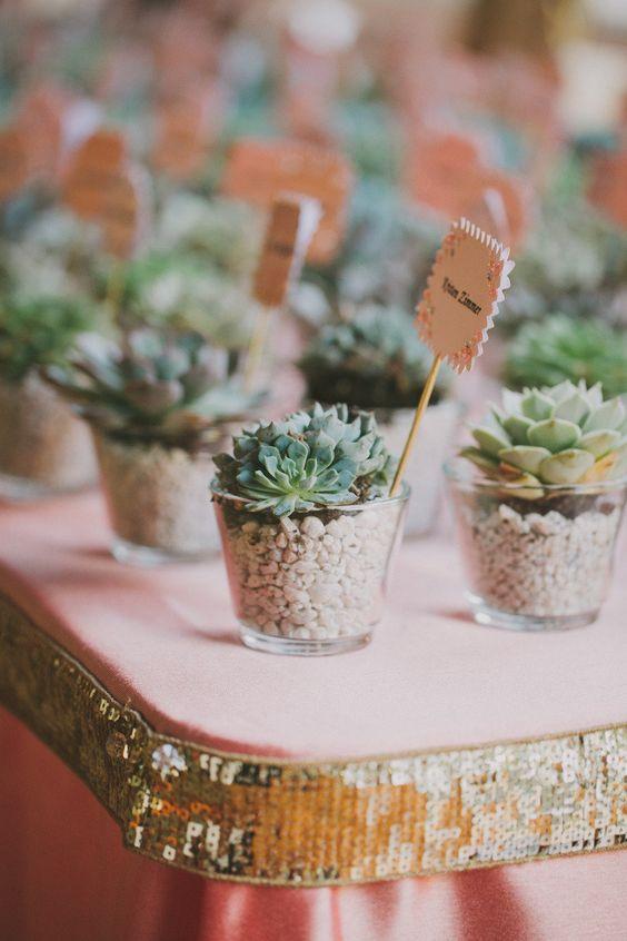Una pequeña planta como regalo de boda